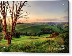 The Valley Acrylic Print by Ray Warren