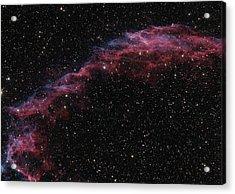 The Veil Nebula Acrylic Print by Brian Peterson
