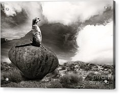 Acrylic Print featuring the photograph The View by Christine Sponchia