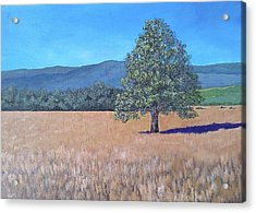 Acrylic Print featuring the painting The View by Suzanne Theis