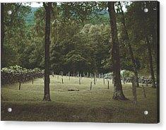 The Vineyard Rests Acrylic Print by Mia Marinkovic