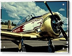 The Vintage North American T-6 Texan Acrylic Print by David Patterson