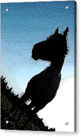 The Visiter Acrylic Print