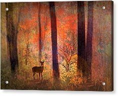 The Visitor Acrylic Print by Jessica Jenney