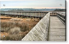The Walkway Acrylic Print by JC Findley