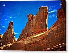 The Wall Acrylic Print by Marty Koch