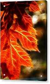 The Warmth Of Fall Acrylic Print