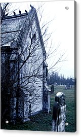 Acrylic Print featuring the photograph The Watchers 2 by Terry Webb Harshman