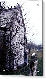 Acrylic Print featuring the photograph The Watchers by Terry Webb Harshman