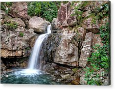 The Water Falls Acrylic Print by Shannon Rogers