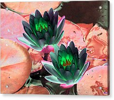 Acrylic Print featuring the photograph The Water Lilies Collection - Photopower 1120 by Pamela Critchlow