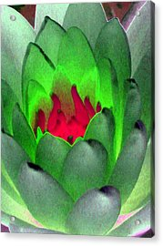 Acrylic Print featuring the photograph The Water Lilies Collection - Photopower 1122 by Pamela Critchlow