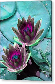 Acrylic Print featuring the photograph The Water Lilies Collection - Photopower 1124 by Pamela Critchlow