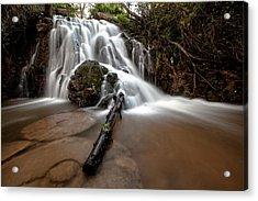 The Waterfall Acrylic Print by Ricardo Silva