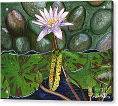 Acrylic Print featuring the painting The Waterlily by Laura Forde