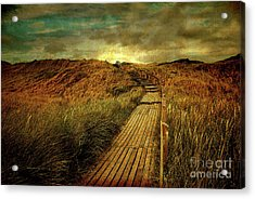 The Way Acrylic Print by Hannes Cmarits