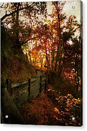 The Way Home Acrylic Print by Leah Moore