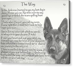 The Way Acrylic Print by Sue Long