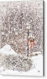 The Weather Outside Is Frightful Acrylic Print by Tricia Marchlik