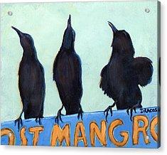 The Weathermen Black Birds Acrylic Print by Dottie Dracos