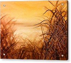 The Web At Dawn Acrylic Print by Karen  Condron