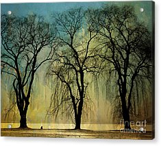 The Weeping Trees Acrylic Print