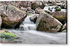 The Wet Acrylic Print by JC Findley