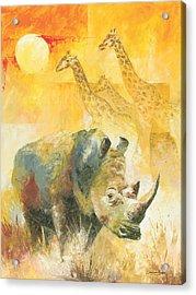 The White Rhino Acrylic Print by Christiaan Bekker