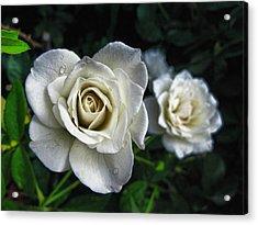 The White Rose Acrylic Print by Oscar Alvarez Jr