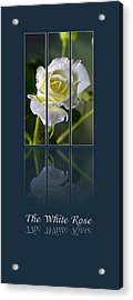 The White Rose Acrylic Print by Sarah Christian