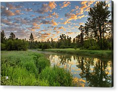 The Whitefish River With Nice Sunrise Acrylic Print by Chuck Haney