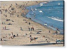 The Wide Sweep Of Bondi Beach - Sydney - Australia Acrylic Print