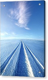 The Wild Blue Yonder Acrylic Print by Phil Koch