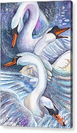 The Wild Swans Acrylic Print by Kate Bedell