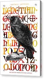 The Wise Raven Acrylic Print