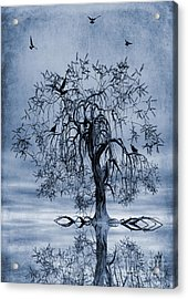 The Wishing Tree Cyanotype Acrylic Print by John Edwards
