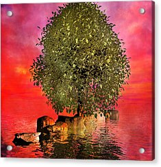 The Wishing Tree Two Of Two Acrylic Print by Betsy Knapp