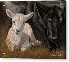 The Wolf And The Lamb Acrylic Print