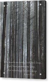 The Woods Acrylic Print