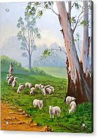 The Wool Road Acrylic Print by Anne Gardner