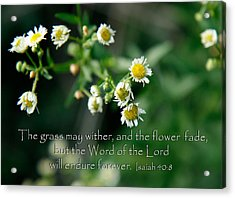 The Word Of The Lord Will Endure Acrylic Print