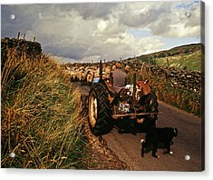 The Yorkshire Shepherd Acrylic Print by John Topman