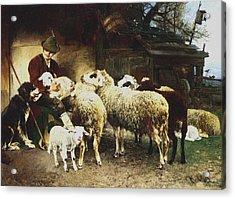 The Young Shepherd Acrylic Print by Heirich von Zugel