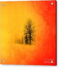 Thee Tree  Acrylic Print by Mark Ashkenazi