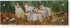 The_grass_is_greener Acrylic Print by Nancy Newman