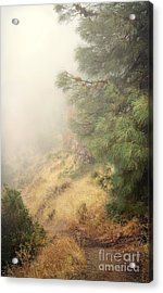 Acrylic Print featuring the photograph There And Back Again 2 by Ellen Cotton