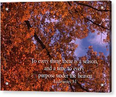 There Is A Season Ecclesiastes Acrylic Print