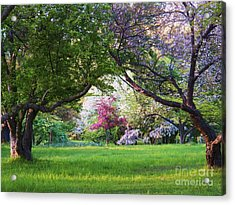 There Is No Place Like Spring Acrylic Print by Judy Via-Wolff