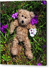 These Are For You - Cute Teddy Bear Art By William Patrick And Sharon Cummings Acrylic Print by Sharon Cummings