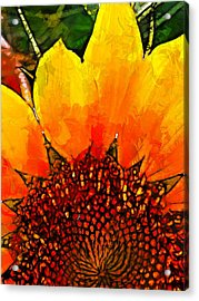 They Do Not Know The Way Acrylic Print